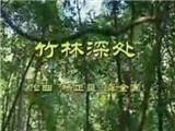 beplay体育app手机版视频教学-李春华beplay体育app手机版演奏视频:竹林深处
